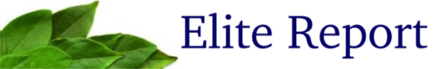 Elite-Report